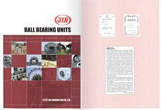 JIB – ve formátu PDF